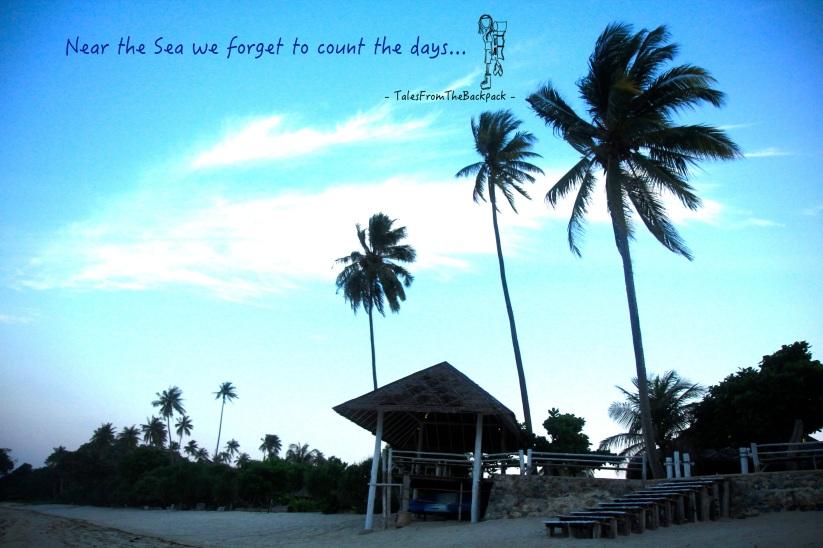 Quote_017_near the sea