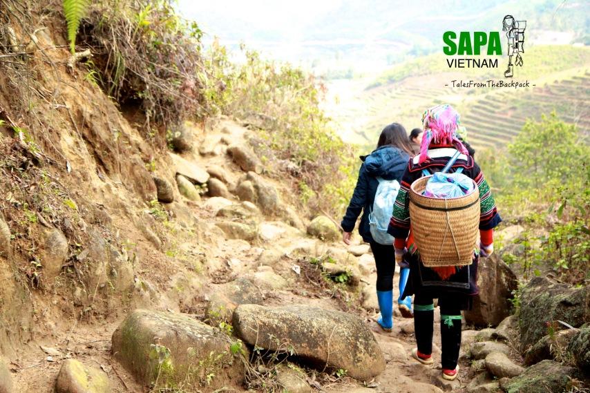 Sapa_019