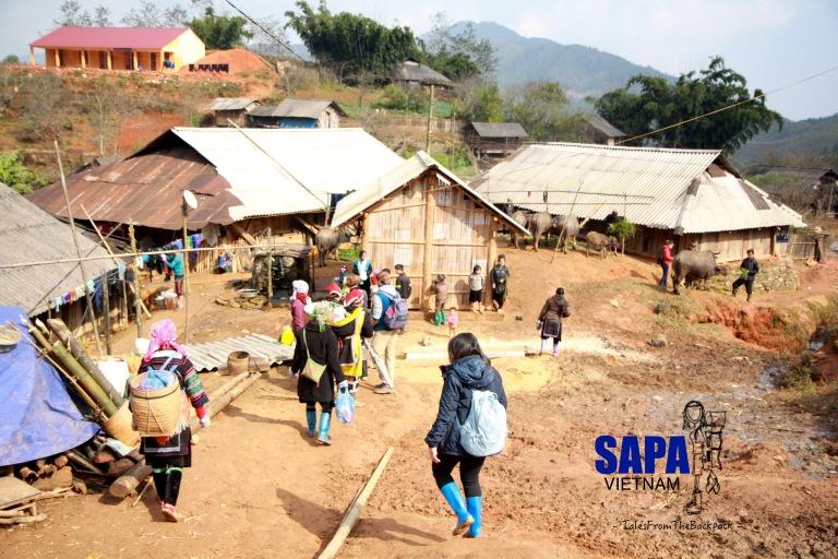 Sapa_189