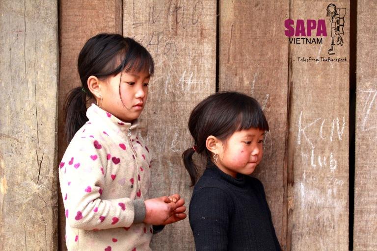 Sapa_207