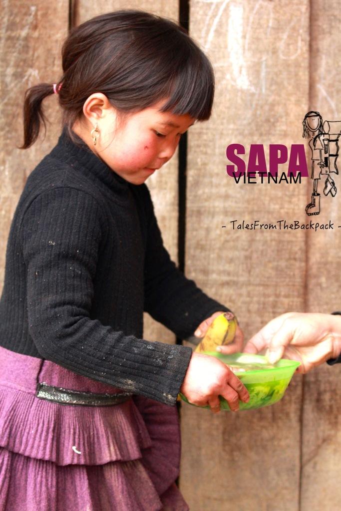 Sapa_208