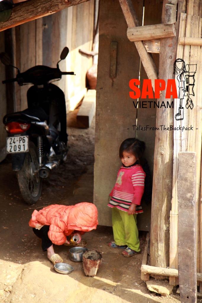 Sapa_244