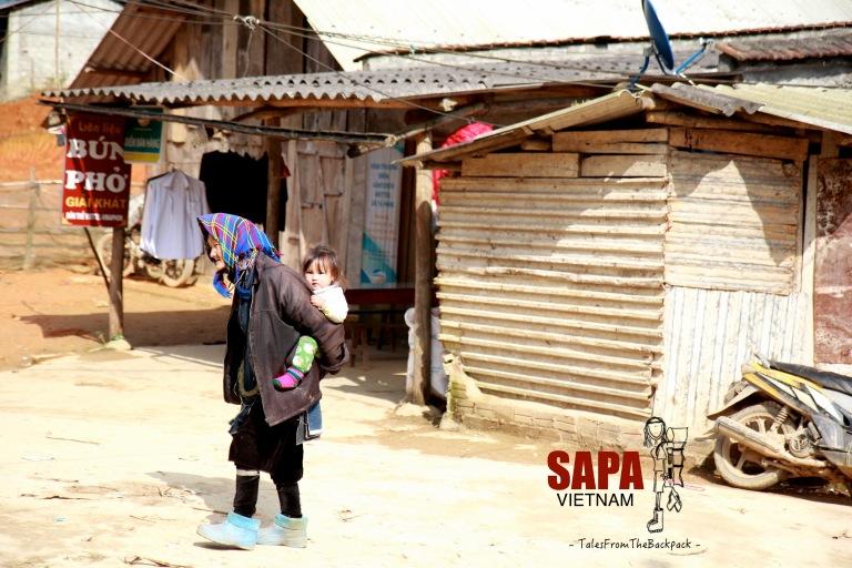 Sapa_261