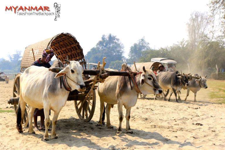 Myanmar_Mingun_006