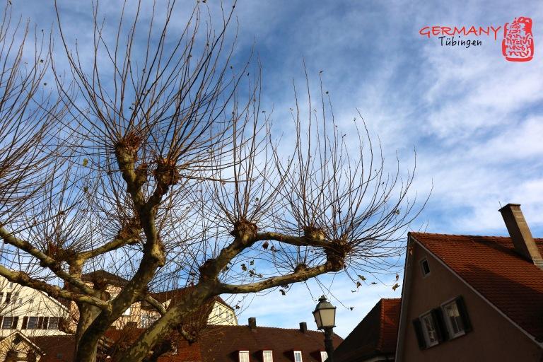 Tübingen_003