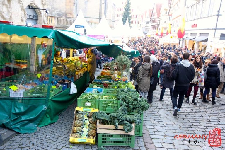 Tübingen_007